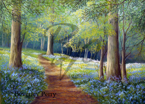 Bluebell Woods - Pastel