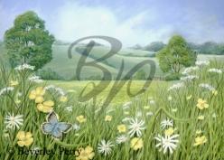 Buttercup Meadow - Pastel