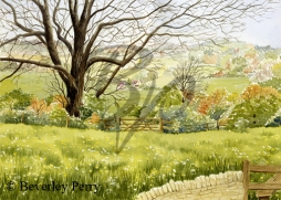 Cotswold view - Watercolour