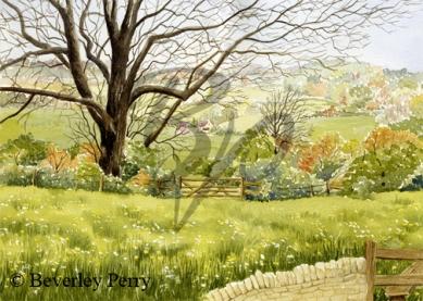 Cotswold view - Watercolour