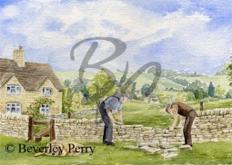Dry stone walling in the Cotswolds - Watercolour
