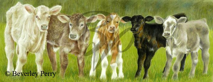 The Newborns - Pastel