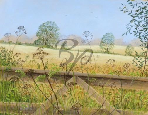 natures Grasses
